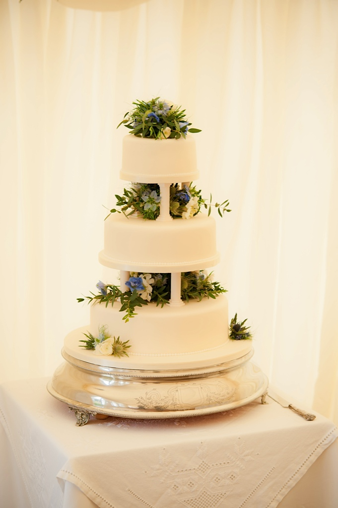 Blue and White Country Cake
