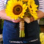 Sunflower hand tied posy